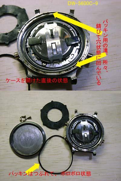 dw-5600c-9_case_x2.jpg